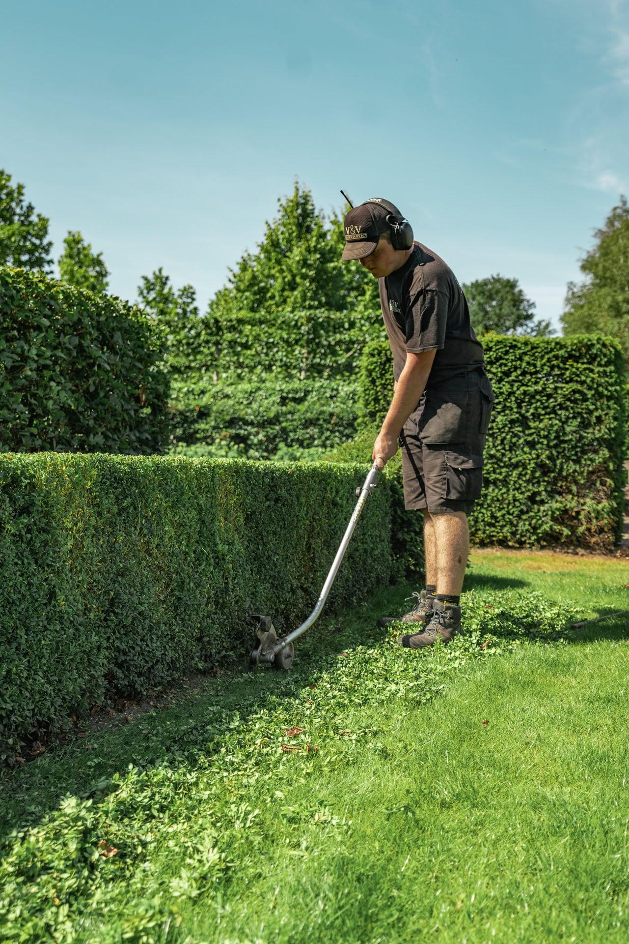 Onderhoud tuin - V&V Groenservice